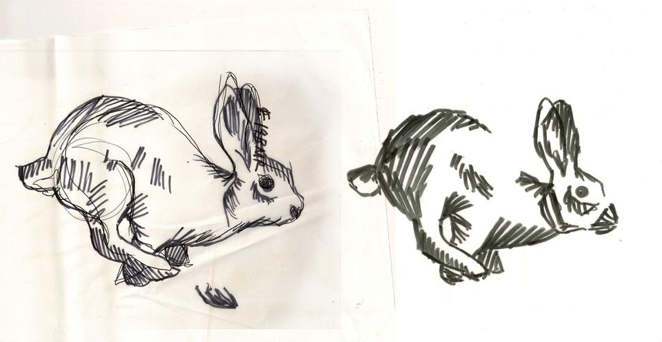 Wild-foods-sketch-2